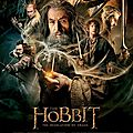 The hobbit : the desolation of smaug