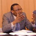 Formes, significations et defis du populisme electoral au cameroun