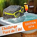 Challenge pavé de l'été!
