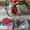 modeler avec la pate fox (12)