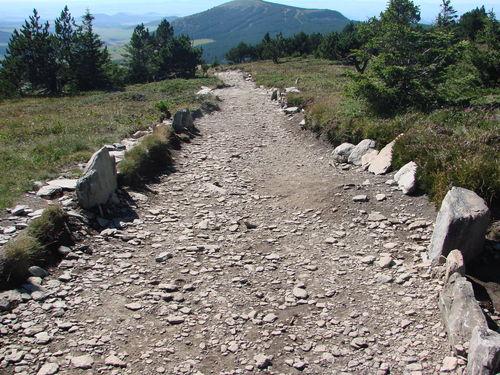 2008 08 21 Le chemin du retour du Mont Mézenc