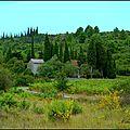 Le Temps des Olives et Notre Dame de l'Olive