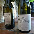 Arbois : <b>Bénédicte</b> et <b>Stéphane</b> <b>Tissot</b> : Savagnin Amphore 2009 et Terrasses du Larzac : Montcalmès 2012