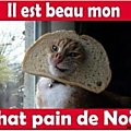 chat pain