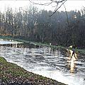 Queue de l'étang prise en glace