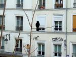 Diane VAILLANT - Paris Montmartre (5)