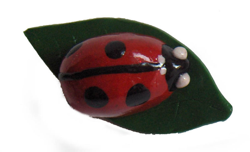 Broche Coccinelle Feuille 1